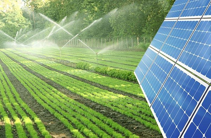 استفاده از آب شور برای کشاورزی